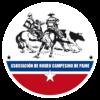 logo paine